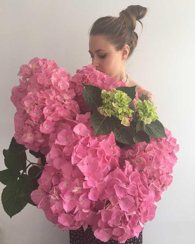 Preciosas hortensias, en TRENCADISSA, floristería online