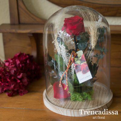 Campana grande con rosa roja eterna Sant Jordi