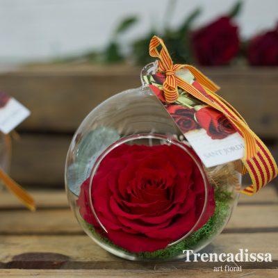 Bola de vidrio con rosa eterna Sant Jordi