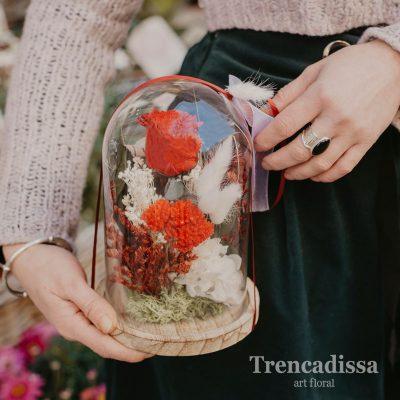 Cúpula con rosa y flores preservadas, venta online
