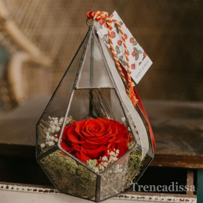 Cúpula triangular con rosa roja King preservada de Sant Jordi