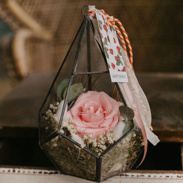 Cúpula con rosa rosa King preservada de Sant Jordi
