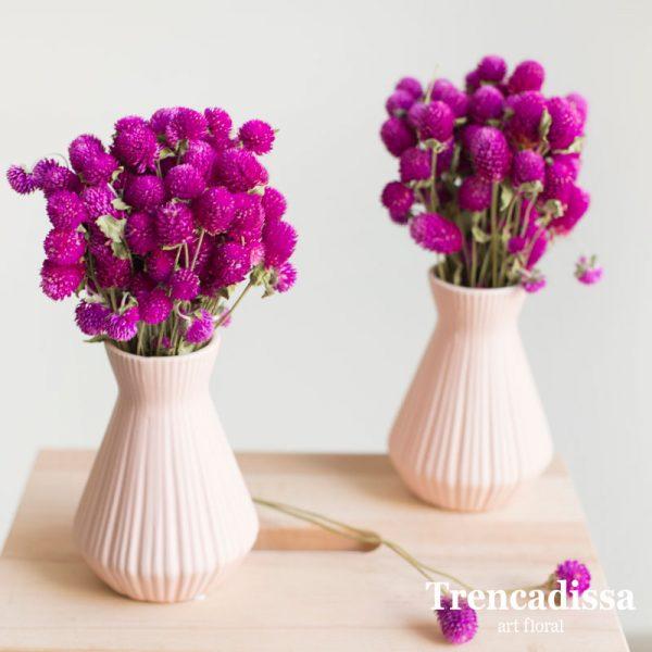 Jarrón de cerámica rosa con perpetuina fucsia