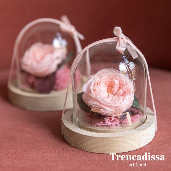 Cúpula de vidrio con rosa inglesa de jardiin